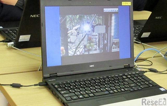 実際にミニトマトを収穫するロボットの映像を見ながら、どんな動きになるのかを観察